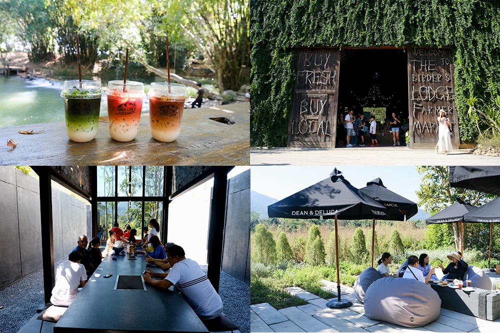【泰國考艾】Khaoyai 考艾 4 家戶外咖啡廳介紹,推薦給熱愛大自然的你